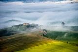 Утро в Тоскана ; comments:24
