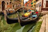 Venice ; comments:8