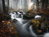 Бистришка река ; comments:26