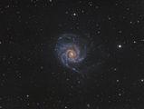 M101 - Галактиката Въртележка ; comments:13