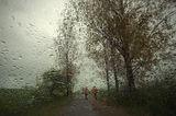 Дъждовно ; comments:10