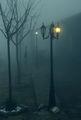 Сенки в нощта ; comments:35