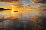 ,,Дунавско утро'' ; comments:10