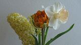 Пролетен букет ; comments:16
