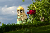 Българската Роза ; comments:1