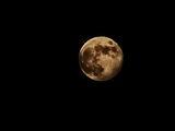 Частично лунно затъмнение от полусянката на Земята-5.06.2020г.22.26ч. ; comments:24