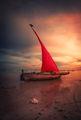 Занзибарска лодка ; comments:34