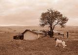 Имало едно време на село ... ; comments:5