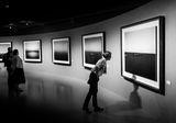 Выставка ; comments:7