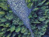 Каменната река ; comments:5