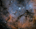 Elephant's Trunk Nebula IC 1396 ; comments:27