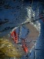 Морето е художник - 2 ; comments:25