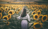слънцето ; comments:19