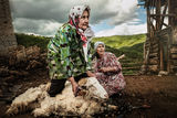 Бабите от Юндола ; comments:26