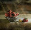 Ябълки от Рая ; comments:26