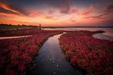 Есента дойде... ; comments:25