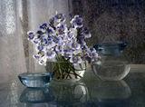 Пролетен букет ; comments:31