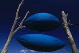 Рапсодия в синьо... ; comments:28