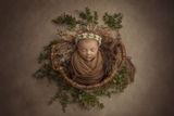 Майката Природа ; comments:42