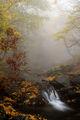 В мъгливата прегръдка на Балкана ; comments:13
