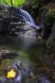 Напът за Фотинските водопади ; comments:10