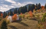 Есен в Гела ; comments:6