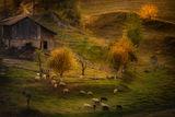 Родопа - късче от рая. ; comments:35
