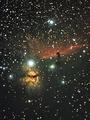 Мъглявините Конска глава и Пламък ; comments:5