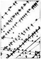 Пресечени линии ; comments:28