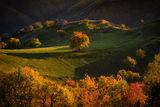 Есен над Родопите ; comments:25
