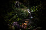 Българската джунгла - Крушунски водопади ; No comments