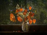 Есенно слънце ; comments:34