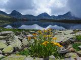 Моето Тевно езеро ; comments:5