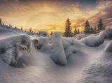 Снежно ; comments:19