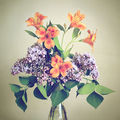 Копнеж за пролет ; comments:2