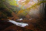 ,,Песента на реката'' ; comments:14