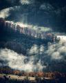 Сутрешна мъгла ; comments:12