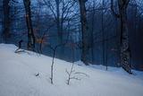 Зимна тишина ; comments:5