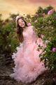 Принцеса Роза... ; comments:7