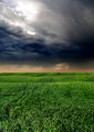 Пред буря ; comments:3