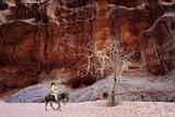 Пустинна разходка ; comments:43