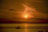 Eclipse Sunrise ; comments:5