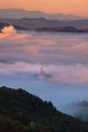 Мъгливо утро ; comments:10