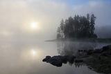 ,,Мъглата рисува'' ; Коментари:34
